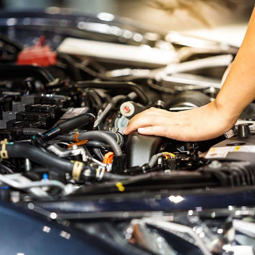 Car Repair And Maintenance >> Sarasota Auto Repair Service Gulf Gate Car Maintenance Near